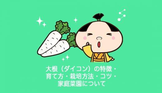 ダイコン(大根)の特徴・育て方・栽培方法・コツ・家庭菜園について