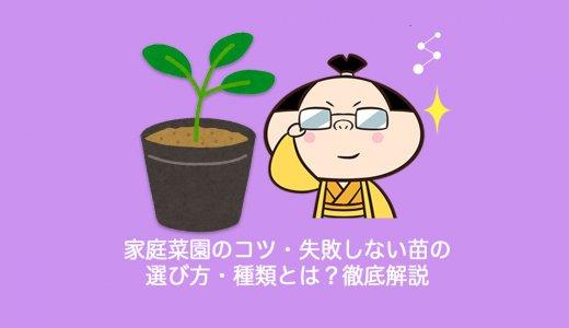 【保存版】家庭菜園のコツ・失敗しない苗(なえ)の選び方・種類とは?徹底解説