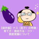 【保存版】ナス(茄子)の特徴・育て方・栽培方法・コツ・家庭菜園について
